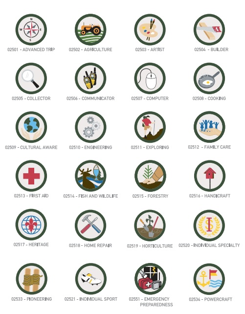 Scouts Badges page 1